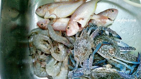 ikan segar bagan lalanag sepang