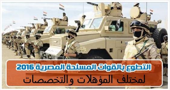القوات المسلحة تفتح باب التطوع لمختلف المؤهلات والتخصصات والتقديم متاح لجميع المحافظات ليوم 17 نوفمبر 2016