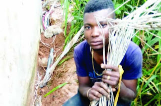 I stole cable to settle down in Lagos – Suspect
