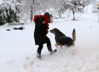 A snow chase