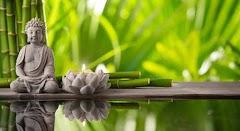 6  frases budistas para que sientas paz interior
