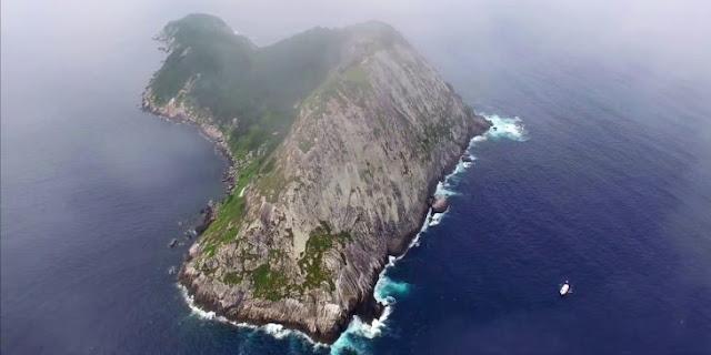Isla de las Cobras: La isla más peligrosa del mundo