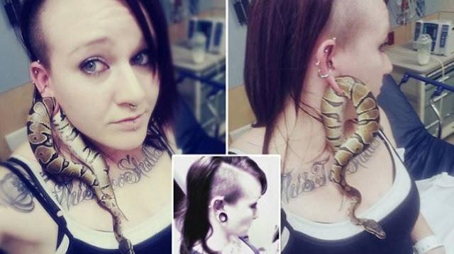 Konyol, Niat Bermain Berakhir dengan Ular Piton Terjebak di Lubang Tindik Telinga Hingga Terpaksa Dilarikan ke IGD