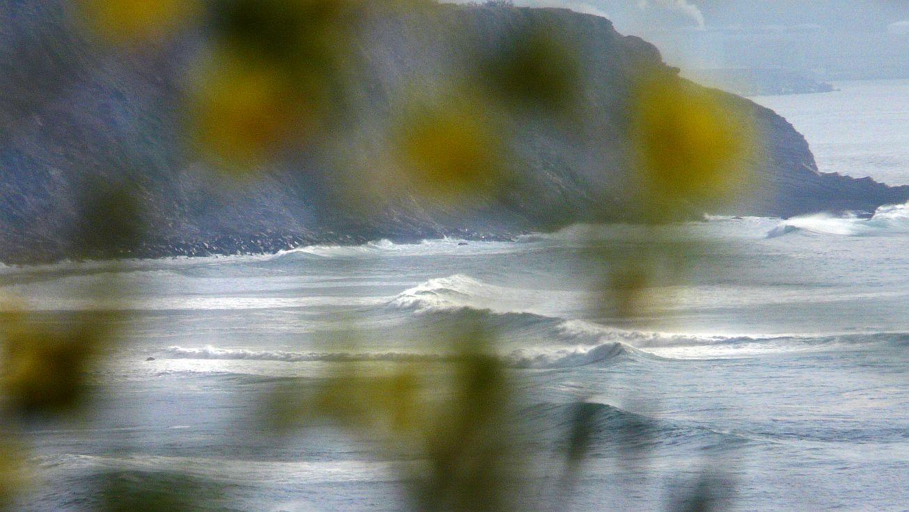 surf menakoz 2015 26