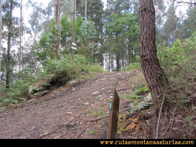 Ruta Hoces del Esva: Cruce en el camino hacia el Cabañón
