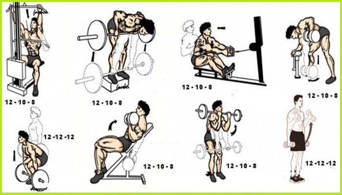 Killer Back and Biceps Workout