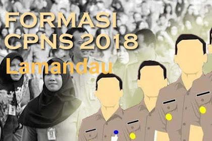 Formasi CPNS Lamandau 2018