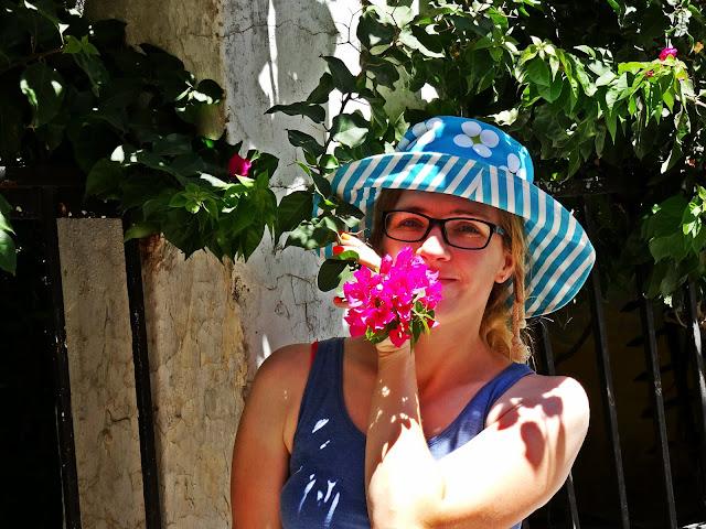 kolorowe kwiaty na wyspach Greckich