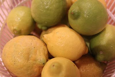 how to make homemade limoncello, home made italian limoncello recipe, make limoncello at home.
