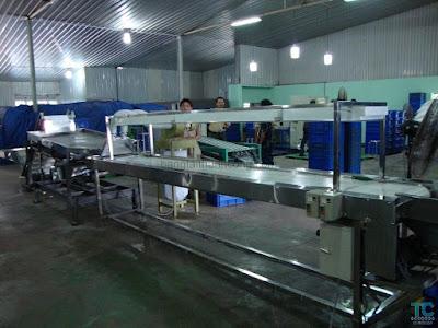Nhà sản xuất băng tải giá rẻ tại TPHCM