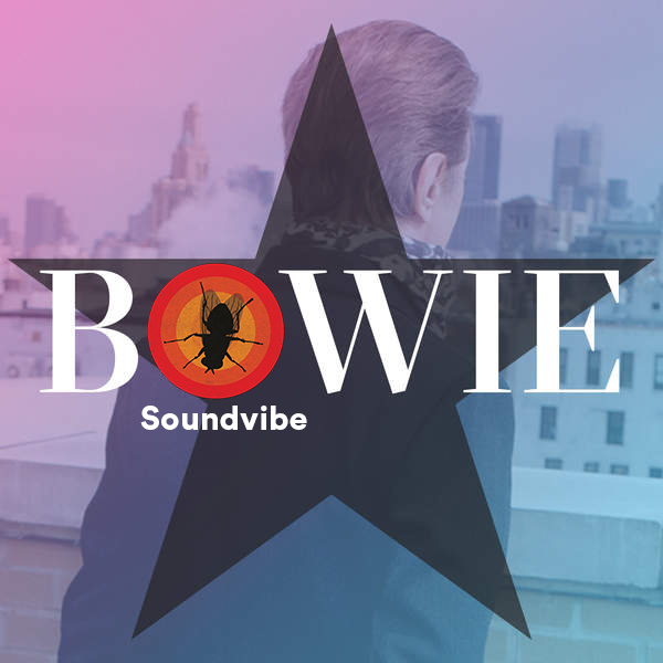 David Bowie — No Plan