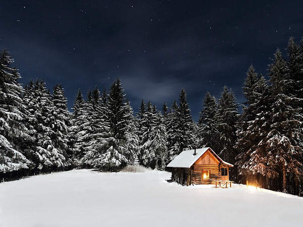 Most Amazing Places To Rent A Cabin In The U.S.