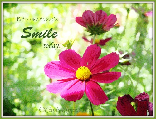 Be Someone's Smile, Cosmos Flowers, Growing Older, Laughter, Digital Art by Cindy Rippe, Florals-Family-Faith, Proverbs 17:22
