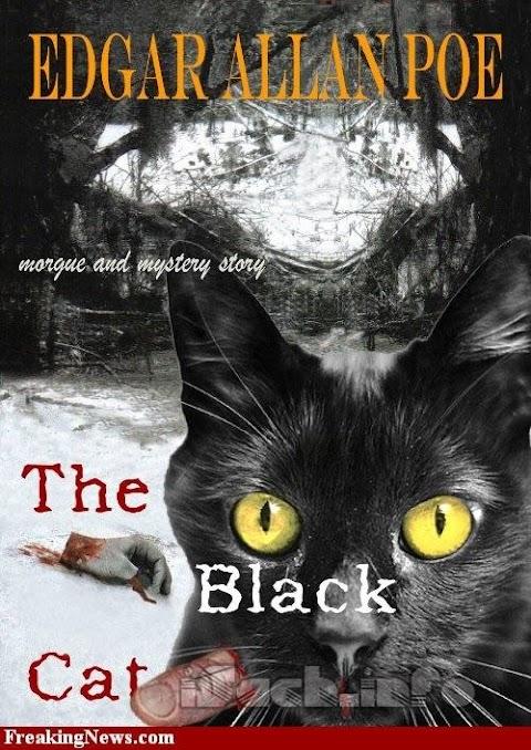 Truyện audio trinh thám kinh dị: Con Mèo Đen- Edgar Allan Poe