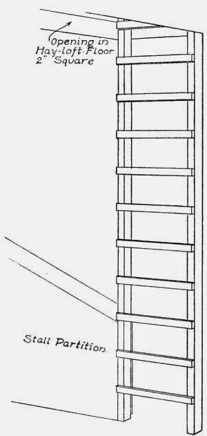 Ladder to Hay-loft.