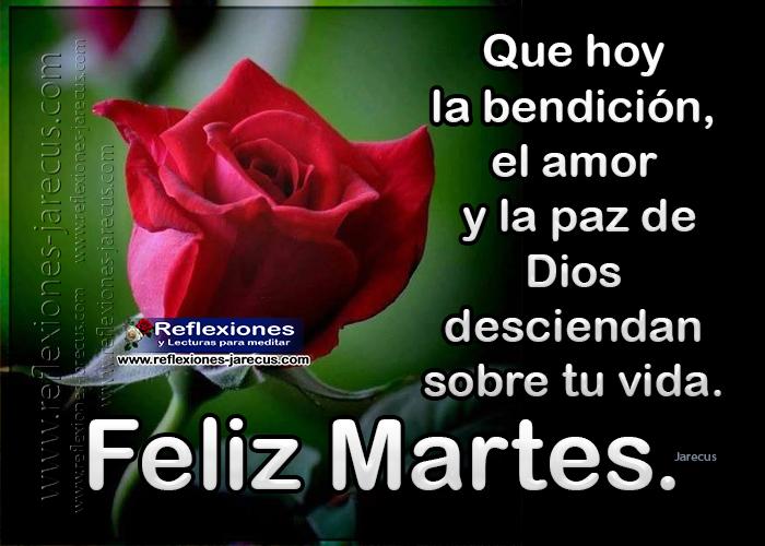 Feliz martes, que hoy la bendición, el amor y la paz de Dios desciendan sobre tu vida.