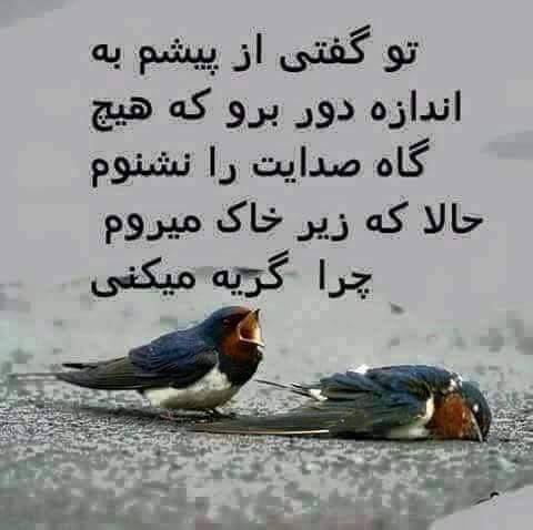 شعر های عاشقانه غمگین متن 2