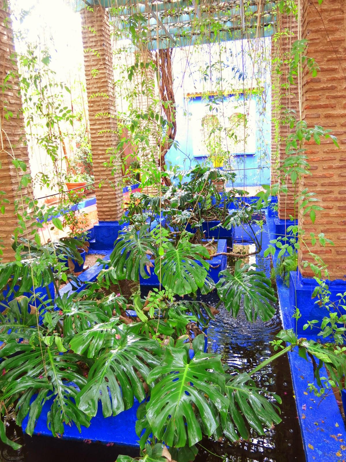 Jardin Majorelle i Marrakesh