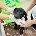 Tareas veterinarias en el barrio República Argentina