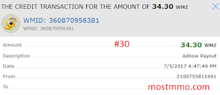 adnow payment proof 30