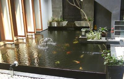 Desain Kolam Ikan Koi Modern