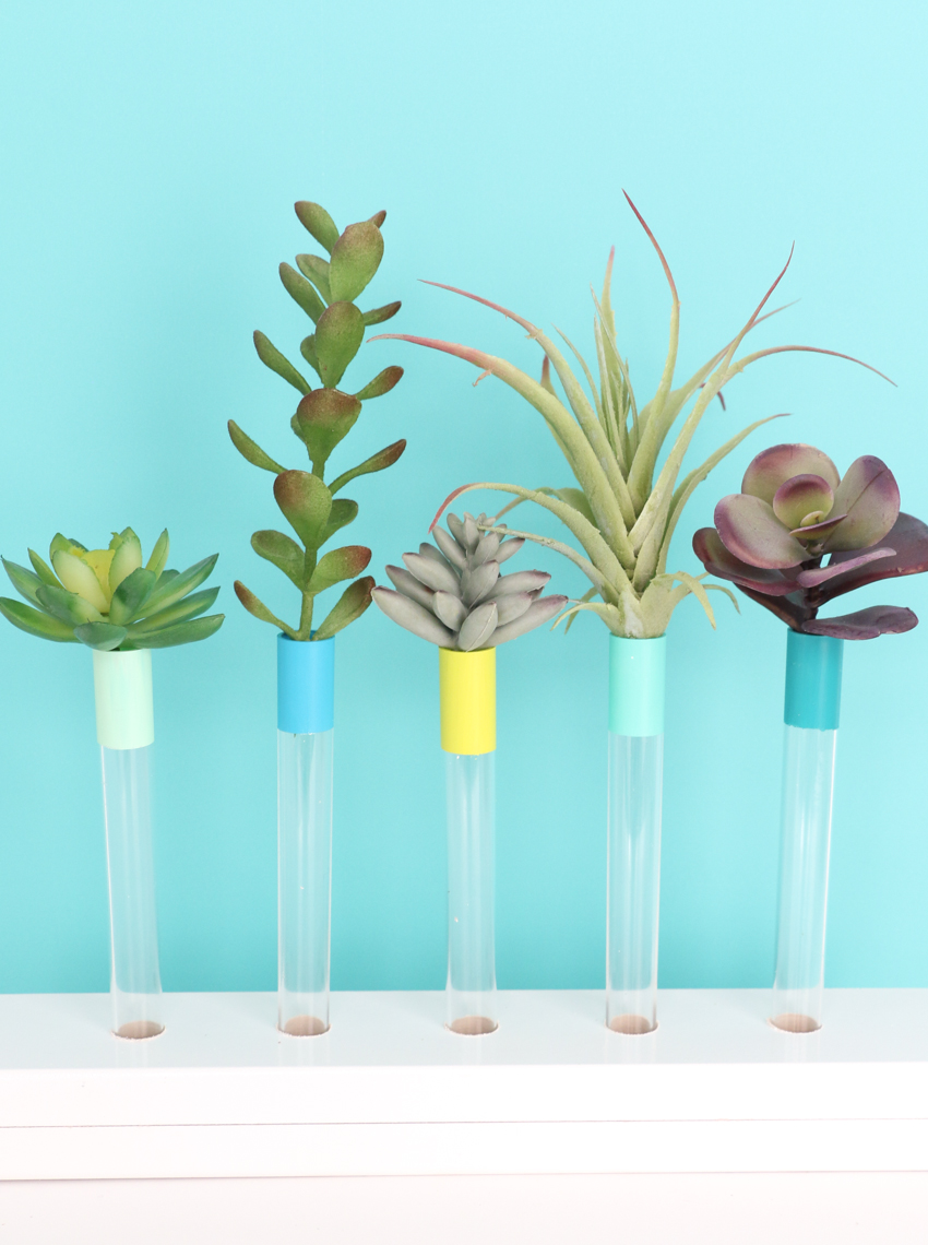 Diy test tube bud vase a kailo chic life for Test tube vase
