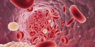 Gejala Leukemia dan pengobatannya