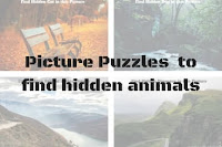 Picture Puzzles for Adults