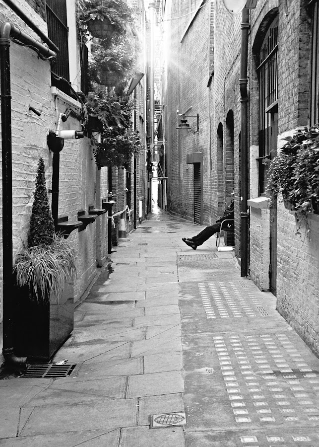 Photo Friday - You'll Shoot Your Eye Out - The Alley - http://youllshootyoureyeout-kathy.blogspot.com/2017/01/the-alley.html