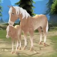 Horse Paradise – My Dream Ranch Mega Mod Apk