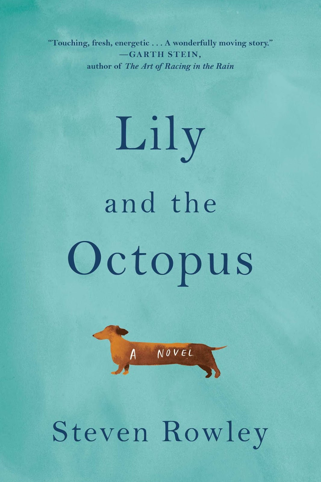 If You Have Ever Loved A Dog Chances Are Will Love This Book I Know Shed Lots Of Eye Rain Lilys Name For Tears At The Touching And Affecting Way