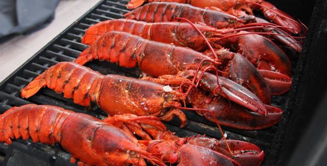 Côn Đảo là nơi cực kì thú vị để cắm trại và thưởng thức hải sản nướng.