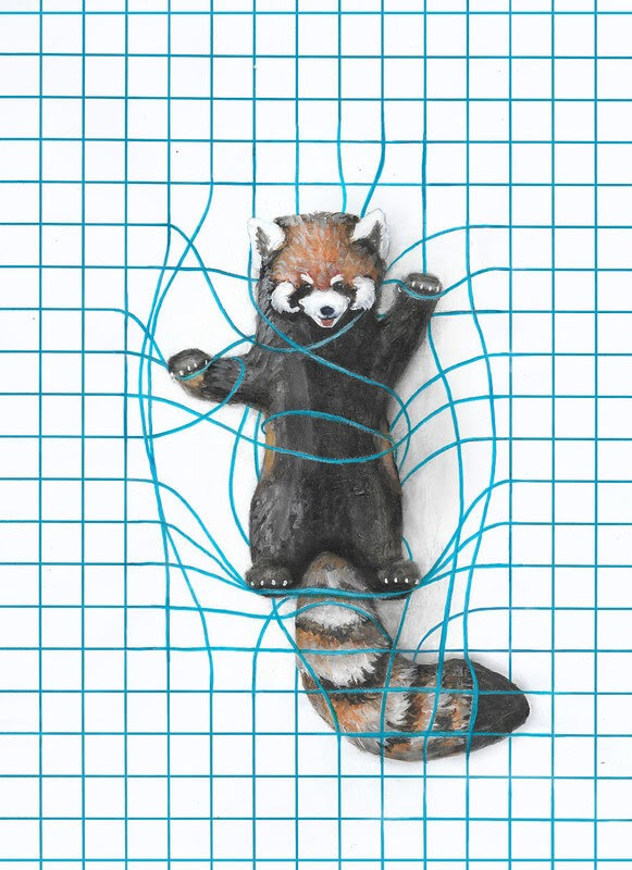 03-Red-Panda-Iantha-Naicker-Drawing-of-Lines-and-Animals-www-designstack-co