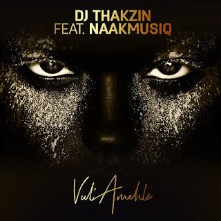 DJ Thakzin - Vul'Amehlo (feat. NaakMusiQ)