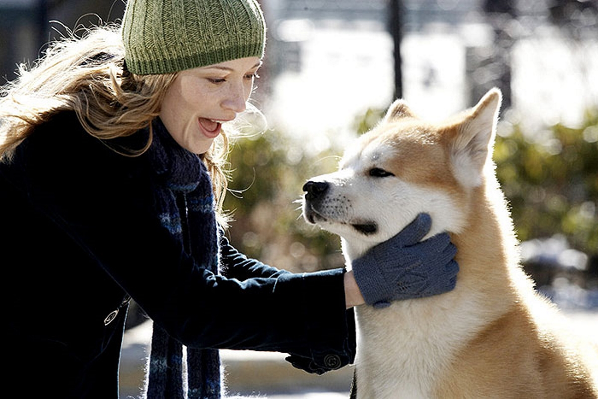 Hachiko A Dogs Story 2009 Full Movie Watch in HD Online ...