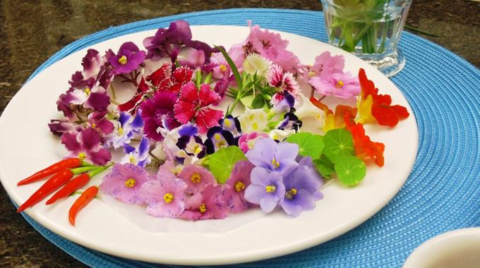 Studio Floral Dora Santoro: Comendo Flores