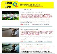 Link Pro - un nou director web pe piata SEO din Romania