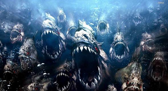 Melihat Lebih Dekat Kengerian Ikan Piranha