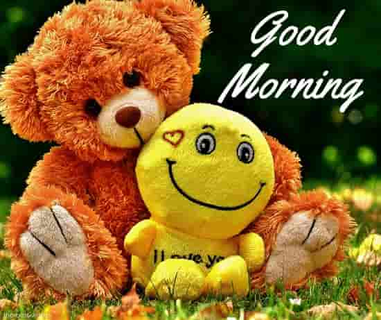 good morning cute sunshine teddy bear