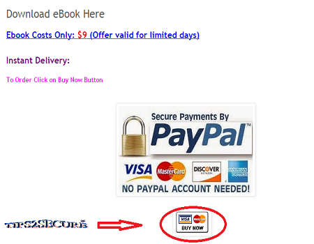 sell ebook online and earn money using blog