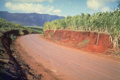 Pengertian Tanah Laterit, Ciri dan Sebarannya