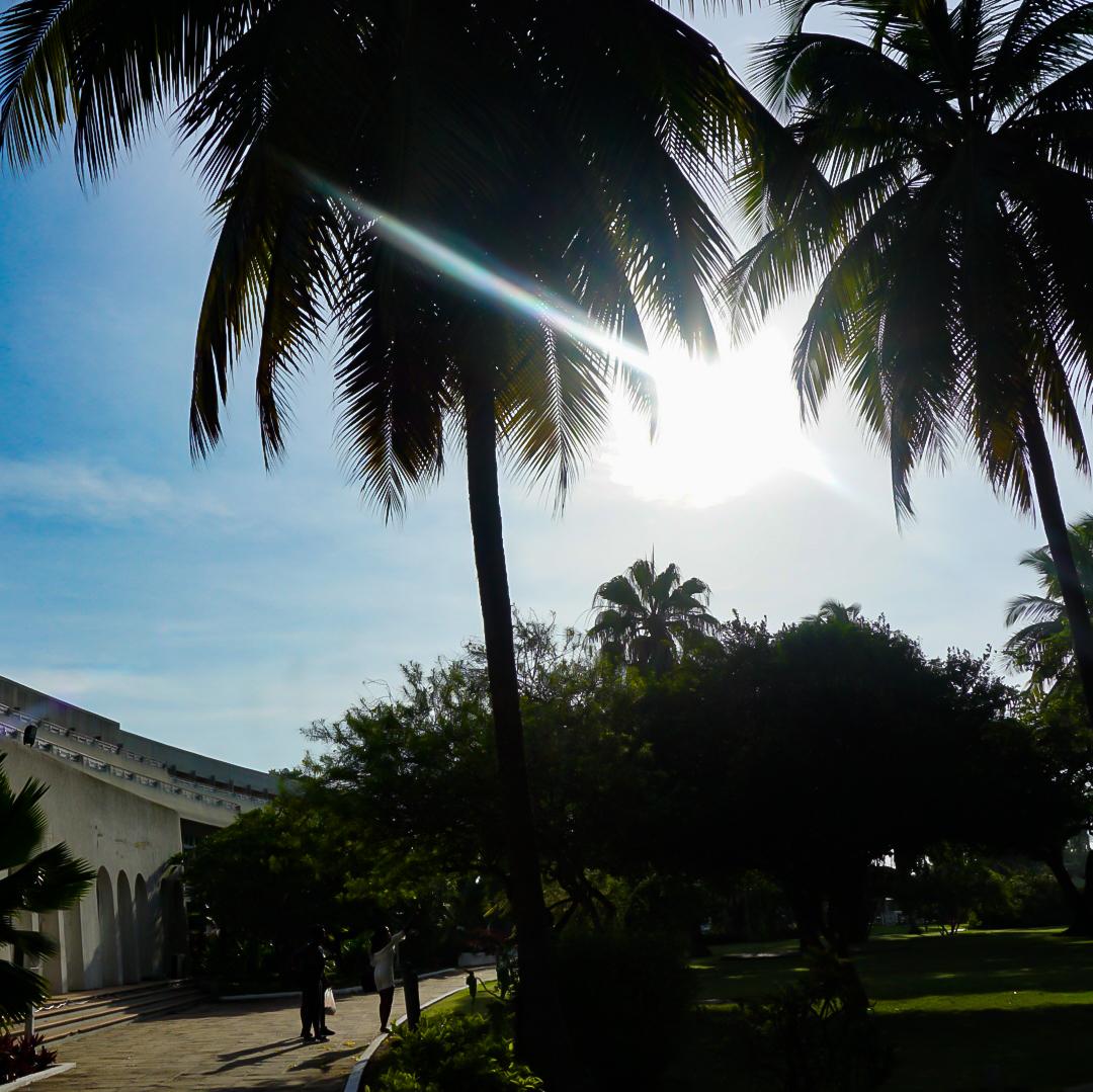 Nigerian blogger, lade ibikunle in Togo