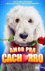 Filme Amor Pra Cachorro