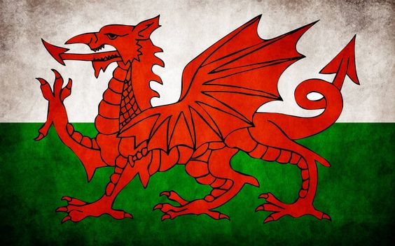 happy saint davids day image