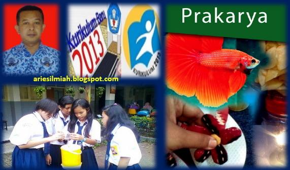 Js Aries Blog Perangkat Pembelajaran Prakarya Smp Mts Kurikulum 2013