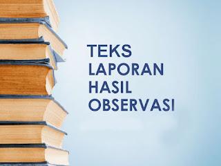 Teks Laporan Hasil Observasi Terbaru: Pengertian, Struktur, Fungsi, dan Contoh Teks Laporan Hasil Observasi