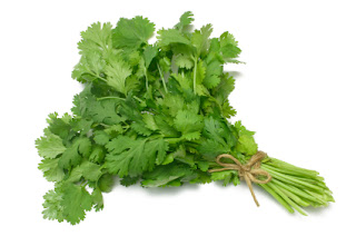 Wonder of the Coriander