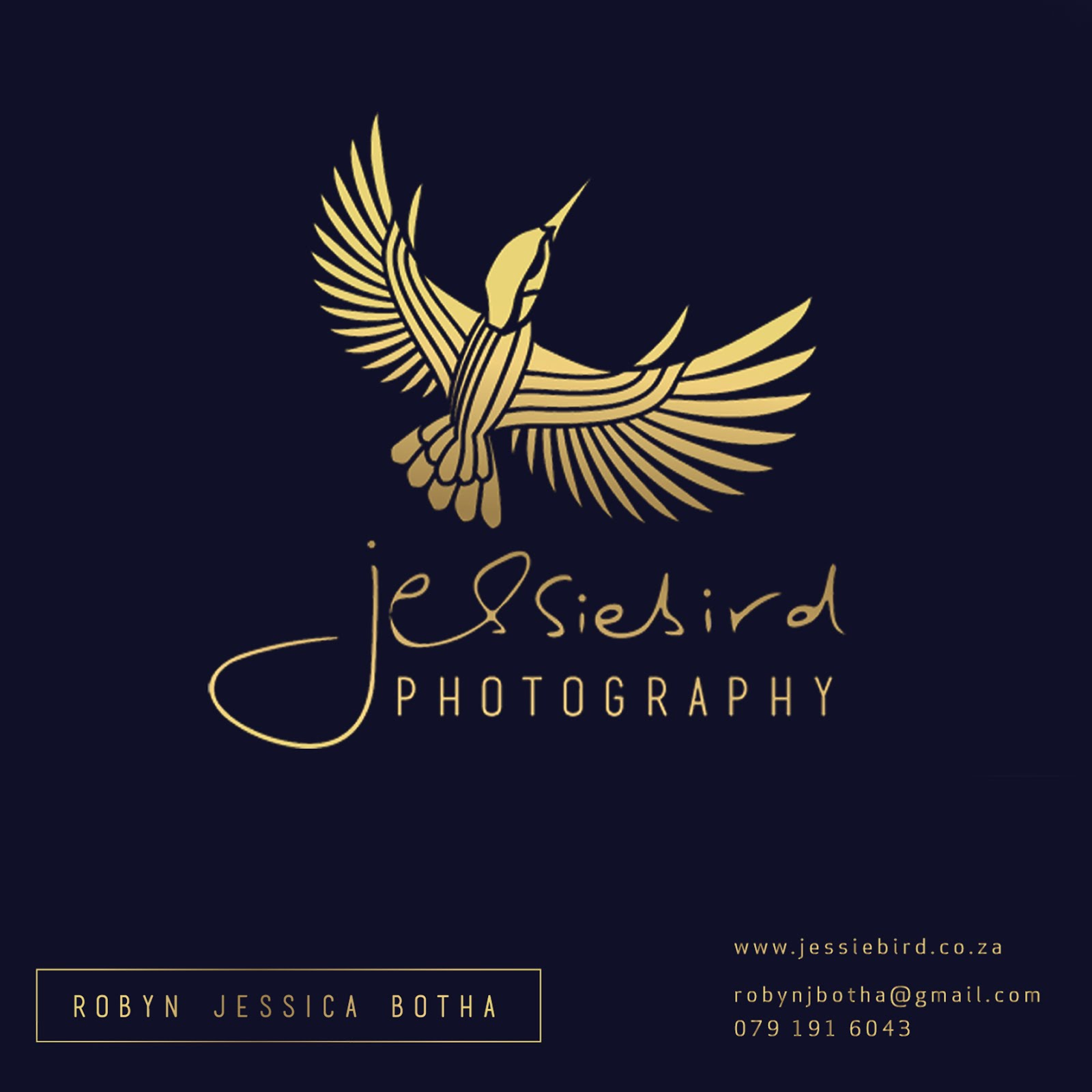 Visit my photography partner's website!