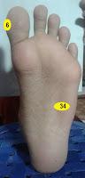 limpa (no.34 kaki kiri), hidung (no.6 sisi luar ibu jari kaki kiri dan kanan)