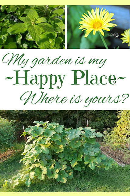 My garden is a big experiment, a creative outlet, my happy place. Where is yours?